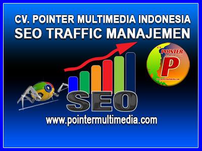 seo traffic manajemen